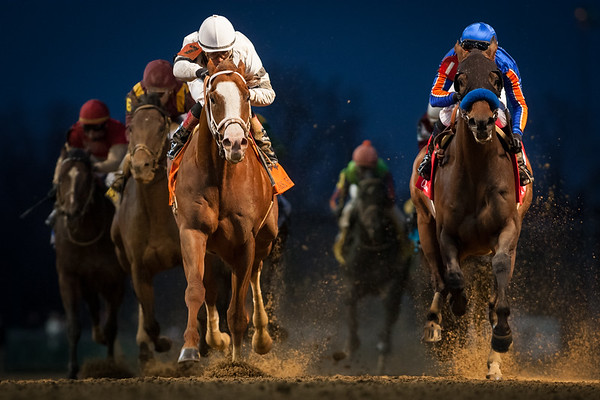 Will Take Charge (Unbridled's Song) wins the Clark Handicap at Churchill Downs on 11.29.2013. Luis Saez up, D Wayne Lukas trainer, Willis Horton owner.