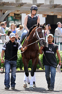 Materiality (Afleet Alex) schools for the Kentucky Derby (Gr I) at Churchill Downs 4/29/15. Trainer: Todd Pletcher. Owner: Alto Racing LLC