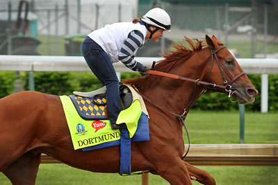 Dortmund (Big Brown) trains for the Kentucky Derby (Gr I) at Churchill Downs 4/30/15. Trainer: Bob Baffert. Owner: Kaleem Shah