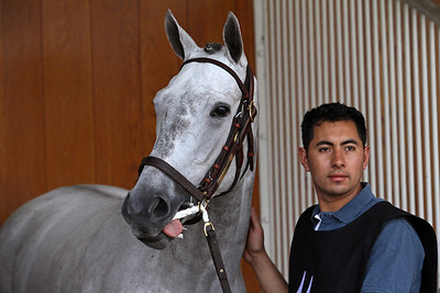 Shook Up (Tapit) schools for the Kentucky Oaks (Gr I) at Churchill Downs 4/29/15. Trainer: Steve Asmussen. Owner: Regis Racing
