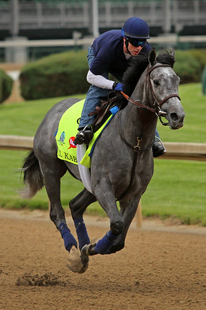 El Kabeir (Scat Daddy) trains for the Kentucky Derby (Gr I) at Churchill Downs 4/30/15. Trainer: John Terranova. Owner: Zayat Stables