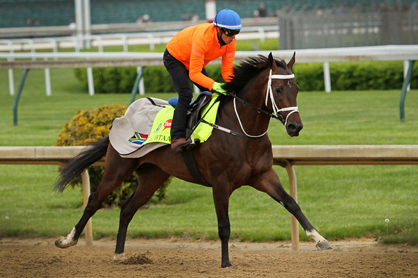 Mubtaahij (Dubawi) trains for the Kentucky Derby (Gr I) at Churchill Downs 4/30/15. Trainer: Michael De Kock. Owner: Sheikh Mohammed Bin Khalifa Al Maktoum