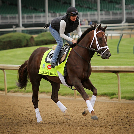 Carpe Diem (Giant's Causeway) trains for the Kentucky Derby (Gr I) at Churchill Downs 4/30/15. Trainer: Todd Pletcher. Owner: WinStar Farm LLC & Stonestreet Stables LLC