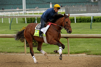 Keen Ice (Curlin) trains for the Kentucky Derby (Gr I) at Churchill Downs 4/30/15. Trainer: Dale Romans. Owner: Donegal Racing