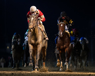 McCraken (Ghostzapper) wins the Kentucky Jockey Club Gold Cup at Churchill Downs on 11.26.2016. Brian Hernandez up, Ian Wilkes trainer, Witham Thoroughbreds owner.