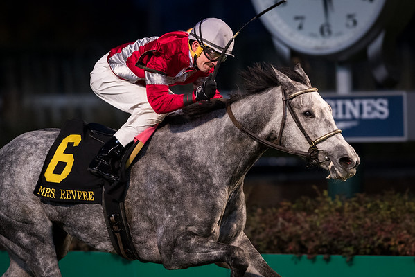 Linda (Scat Daddy) wins the Ms Revere Stakes at Churchill Downs on 11.25.2016. Brian Hernandez up, Ian Wilkes trainer, Witham Thoroughbreds owners.