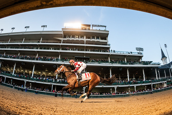 Farrell (Malibu Moon) wins the Golden Rod at Churchill Downs on 11.26.2016. Channing Hill up, Wayne Catalano trainer, Coffeepot Stables owners.