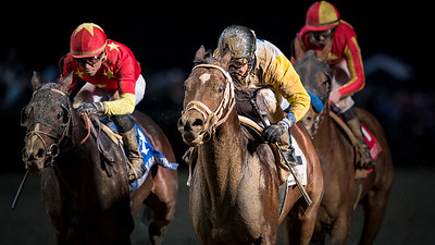 Seeking the Soul ( Perfect Soul) wins the Clark Handicap (G1) at Churchill Downs on 11.24.2017. John Velazquez up, Dallas Stewart trainer, Charles Fipke owner.