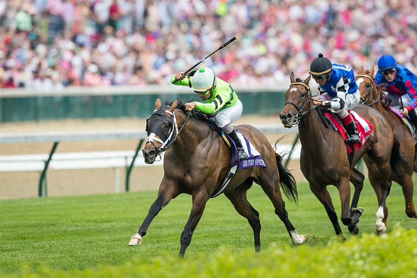 Will Call (Country Day) wins the The Turf Sprint (G3) at Churchill on 5.4.2018. Shaun Bridgmohan up, Brad Cox trainer, Klein Racing owner.