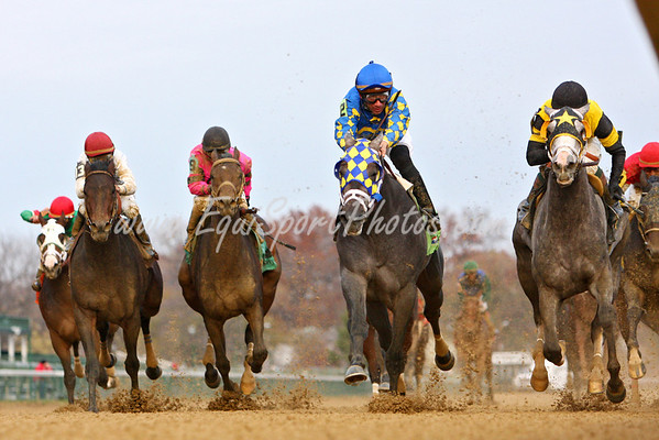 Monba wins an Allowance over Macho Again at Churchill. 11.24.2007