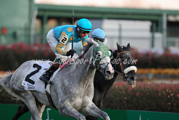 Thorn Song, with Kent Desormeaux, wins the River City at Churchill Downs. 11.23.2007