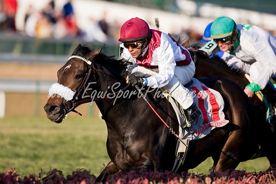 War Tigress (War Chant), Julio Garcia up, wins the Caressing H. at Churchill 11.09.2008mw ( Horse Racing Photos by EquiSport Photos )