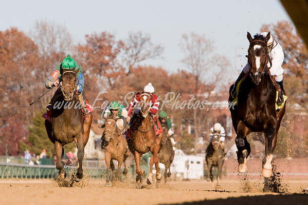 Rachel Alexandra (Medaglia D'Oro), Calvin Borel up, wins the Golden Rod S. (G2) at Churchill Downs 11.29.2008mw ( Horse Racing Photos by EquiSport Photos )