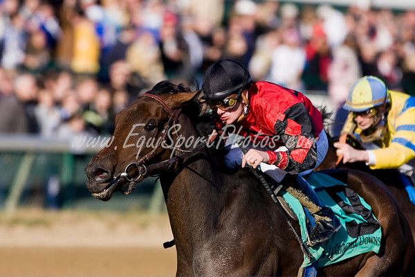 ( Horse Racing Photos by EquiSport Photos )
