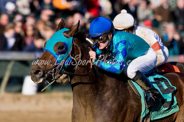 Gresham (Seeking The Gold), Julien Leparoux up, wins an Allowance at Churchill 11.29.2008mw ( Horse Racing Photos by EquiSport Photos )