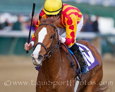 Bellaridge (Cactus Ridge) Tony Farina up, wins a 2 yr old filliies allowance at Churchill Downs 11.27.2010mw