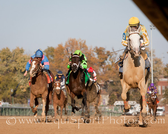 Dancinginherdreams (Tapit), Julien Leparoux up, wins The Pocahontas S. (G2)  for John Ward and owner John Oxley at Churchill Downs 10.31.2010mw.