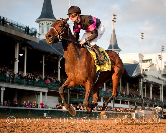 Kathmanblu (Bluegrass Cat) Julien Leparoux up, wins The Golden Rod Stakes at Churchill Downs.  Owner Five D Thoroughbreds and Wind River Stables, Trainer Kenny McPeek