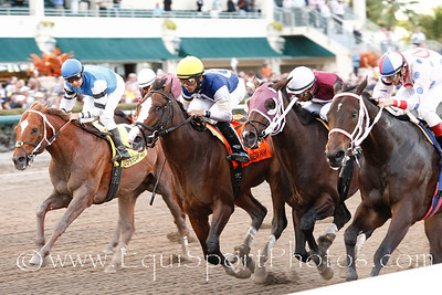 Tackleberry (Montbrook) (far right with red, white, blue hat) with Javier Santiago up wins Gulfstrean Park H., Trainer: Luis Olivares, Owner: Luis Olivares, 03-12-2011 Gulfstream Park