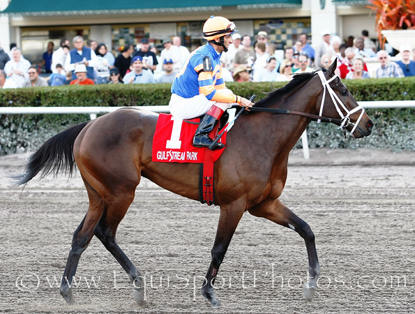 Come back: Uncle Mo (Indian Charlie) with John Velazques up wins the Timely Writer, Trainer: Toss Pletcher, Owner: Repole Stable, 03-12-2011 Gulfstream Park