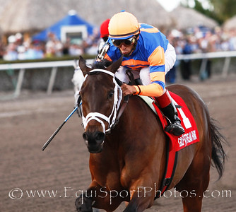 Uncle Mo (Indian Charlie) with John Velazques up wins the Timely Writer, Trainer: Toss Pletcher, Owner: Repole Stable, 03-12-2011 Gulfstream Park