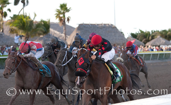 Musical Romance (Concorde's Tune) (right, red hat) with Juan Leyva up wins The Inside Information GII at Gulfstream, Owner: Pinnacle Racing Stable and William Kaplan,  Trainer: William Kaplan, 03.17.2012 Gulfstream Park 10th race Photo by Joe Ganley