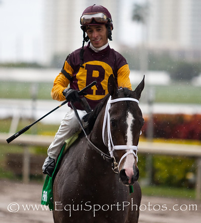 Broadway's Alibi (Vindication) with John Velazquez up wins the Forward Gal at Gulfstream, Owner: E. Paul Robsham Stables, Trainer: Todd Pletcher, 9th Race Gulfstream Park 01/29/2012