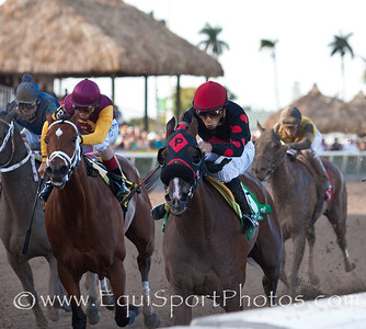 Musical Romance (Concorde's Tune) (right) with Juan Leyva up wins The Inside Information GII at Gulfstream, Owner: Pinnacle Racing Stable and William Kaplan,  Trainer: William Kaplan, 03.17.2012 Gulfstream Park 10th race Photo by Joe Ganley
