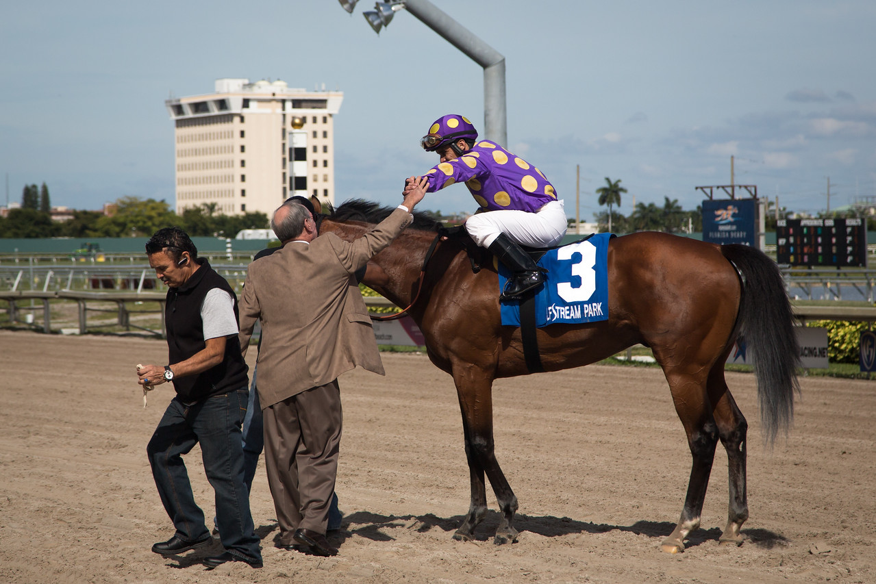 Awesome Banner (Awesome of Course) wins the Swale (G2) at Gulfstream Park. Jose Caraballo up, Stanley Gold trainer, Jacks or Better Farm owner.