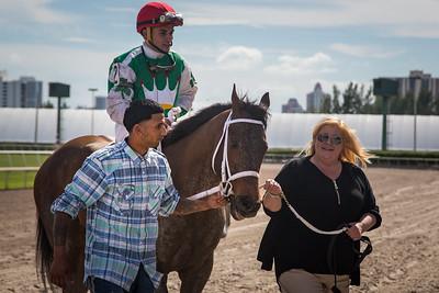 Cathryn sophia (Street Boss) wins The Forward Gal (G2) at Gulfstream Park on 1.30.2016. Joel Rosario up, John Servis trainer, Cash is King LLC owner.