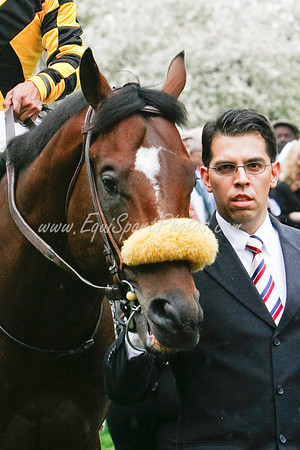 Tomcito at Keeneland 4.19.2008, with trainer Dante Zanelli (EquiSport Photos)