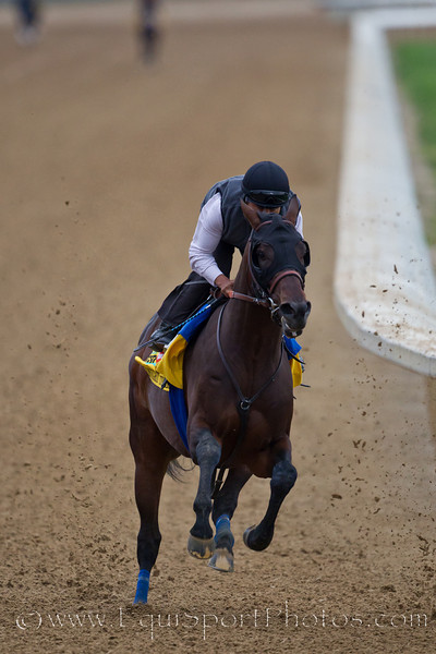Midnight Interlude works at Churchill Downs on 4.26.2011