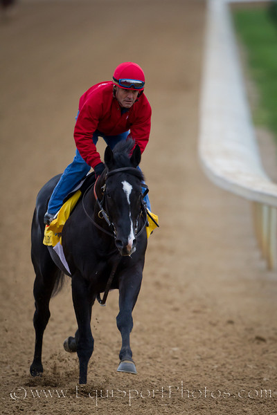 Archarcharch exercises at Churchill Downs on 4.26.2011
