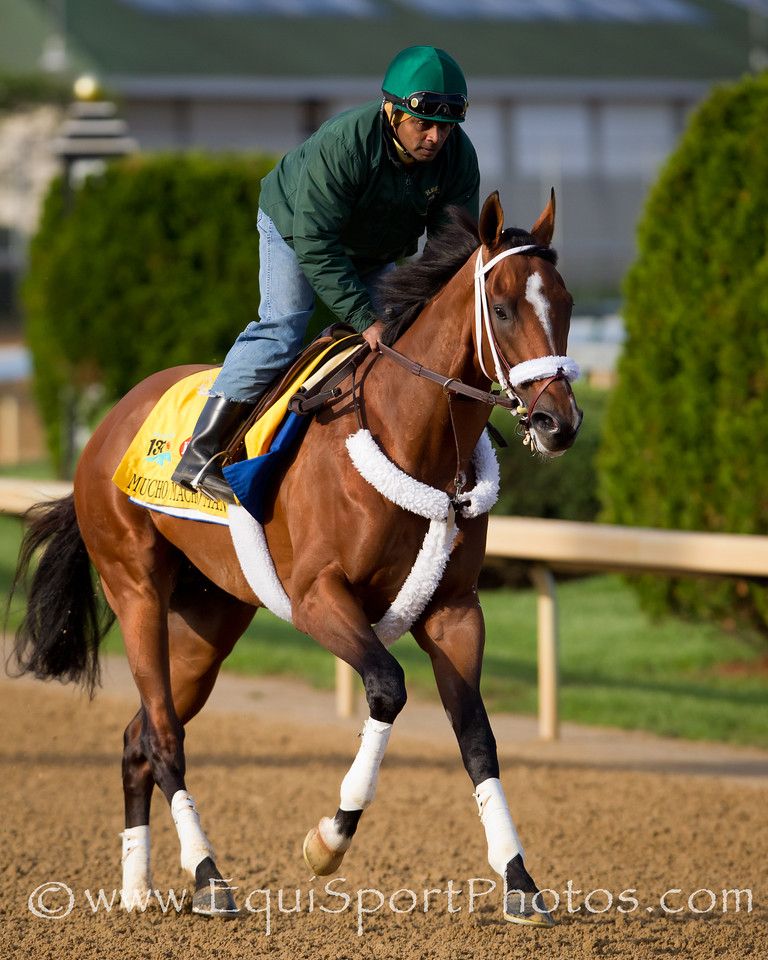 Muchomachoman gallops at Churchill Downs 4.28.2011