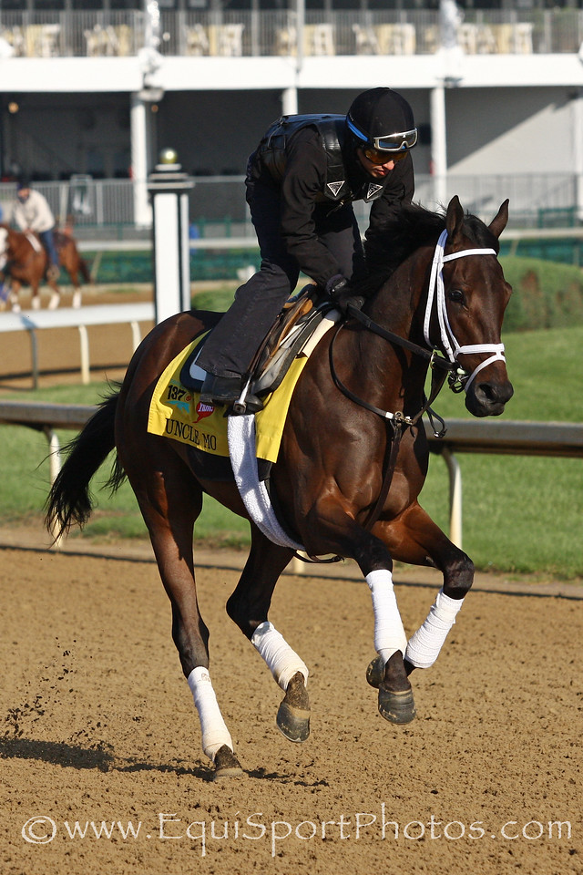 Uncle Mo gallops at Churchill Downs 5/5/11.