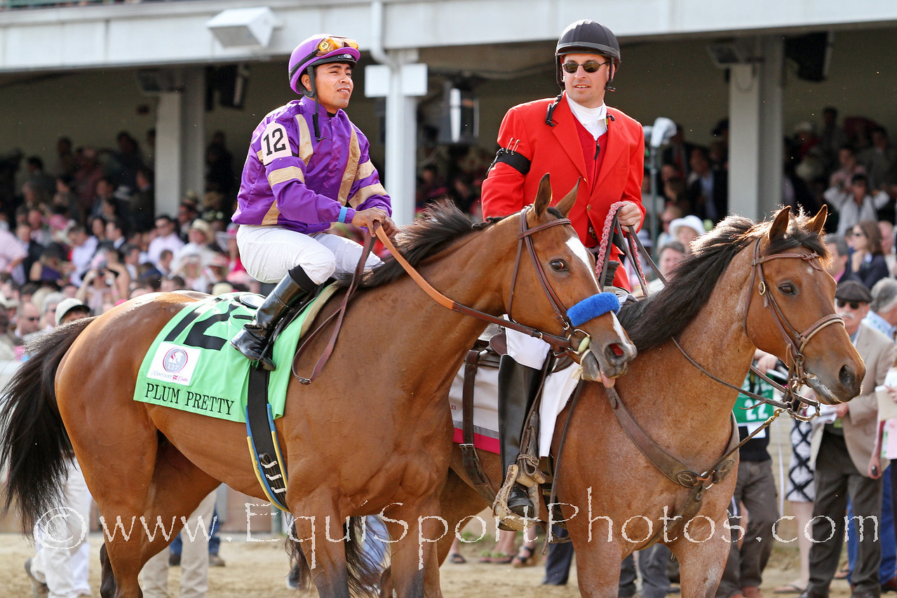 Plum Pretty (Medaglia d'Oro) and jockey Martin Garcia win the Kentucky Oaks (Gr. I) at Churchill Downs 5/6/11 for owner Peachtree Stable and trainer Bob Baffert.