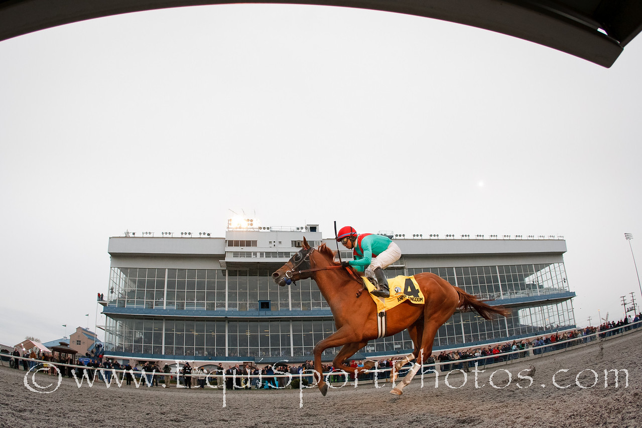 Animal Kingdom (Leroidesanimaux), Alan Garcia up, wins the Vinery Spiral Stakes at Turfway Park for trainer Graham Motion and owner Team Valor, 3.26.2011mw