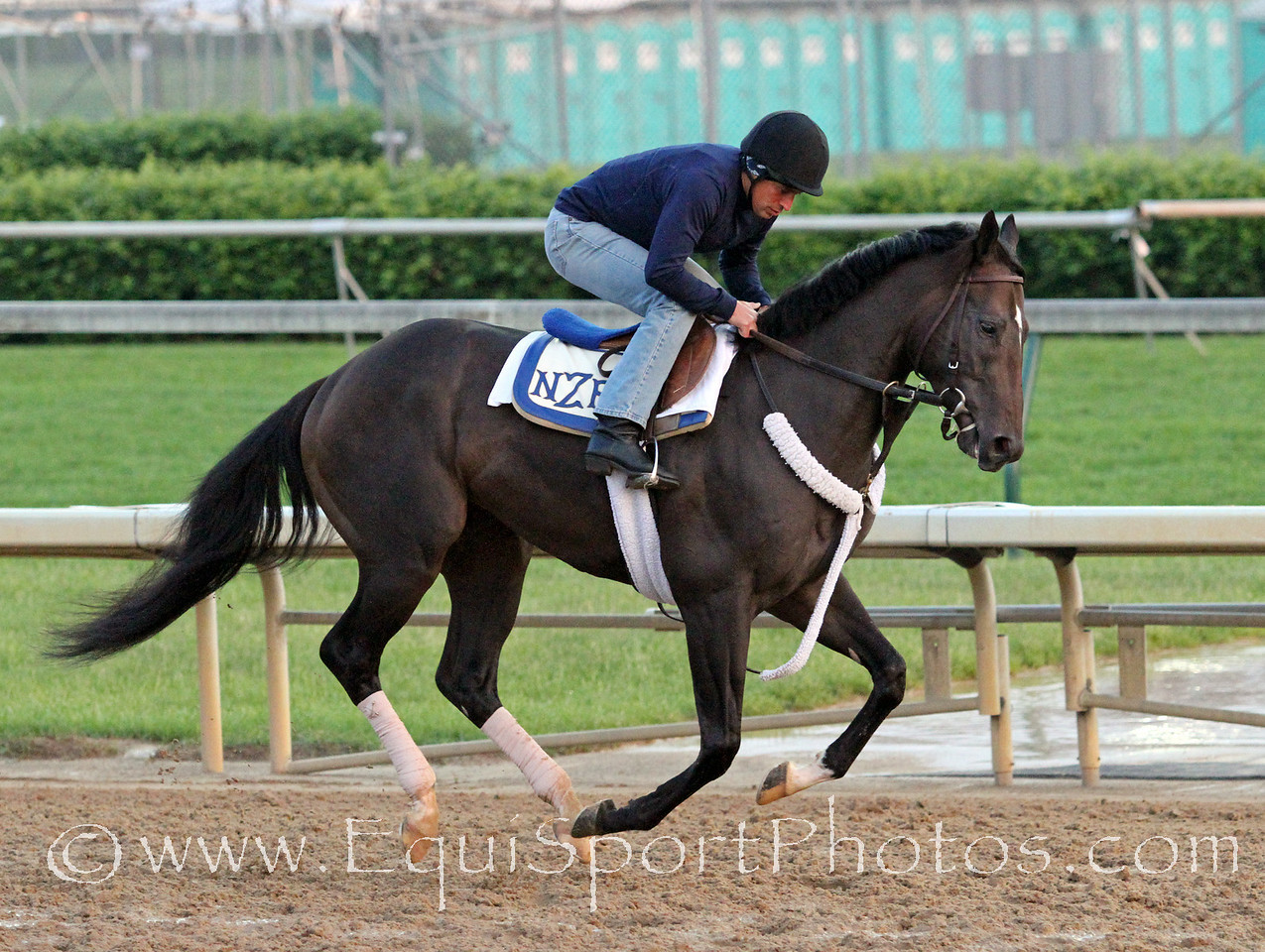 Dialed In gallops at Churchill Downs 5/4/11.