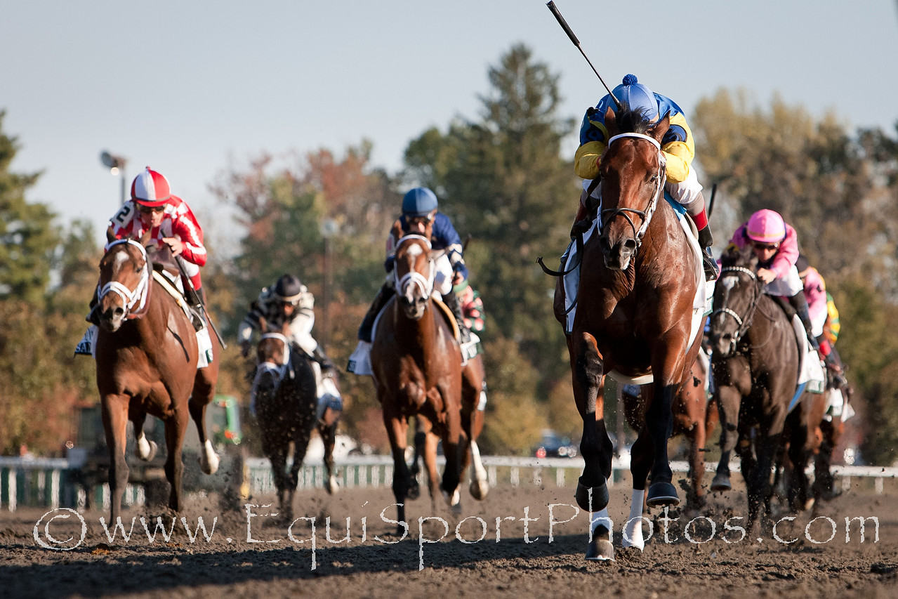 J.B.'s Thunder (Thunder Gulch), Shaun Bridgmohan up, wins The Dixiana Breeders' Futurity at Keeneland 10.09.2010mw.