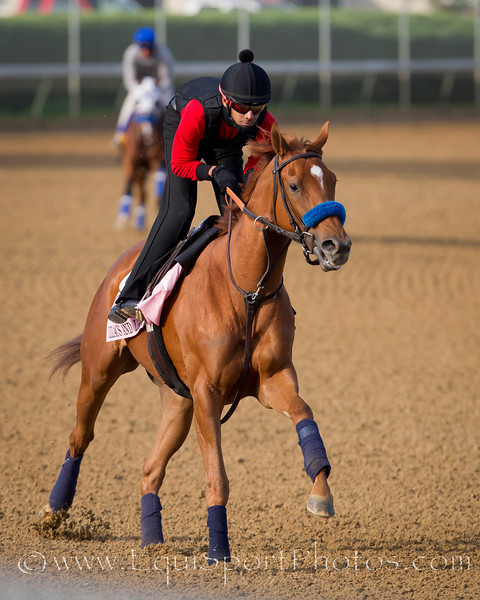 r gallops at Churchill Downs 4.28.2011