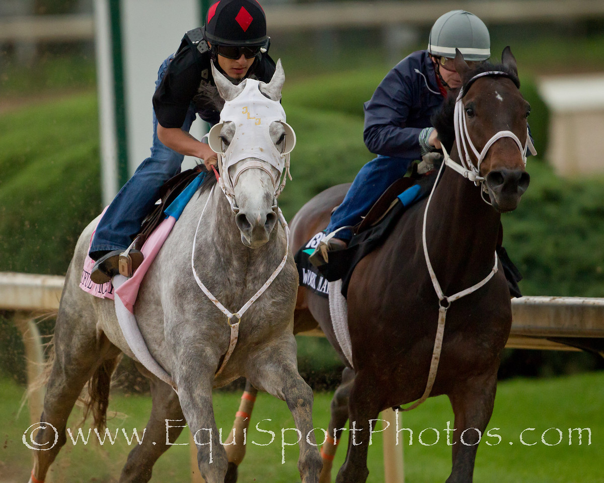 Joyful Victory works at Churchill Downs on 5/1/2011