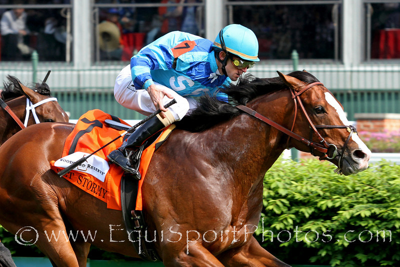 Get Stormy (Stormy Atlantic) and jockey Ramon Dominguez win the Woodford Reserve Turf Classic (Gr. I) at Churchill Downs 5/7/11.