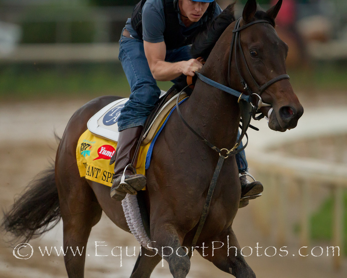 Brilliant Speed gallops at Churchill Downs on 05.01.2011