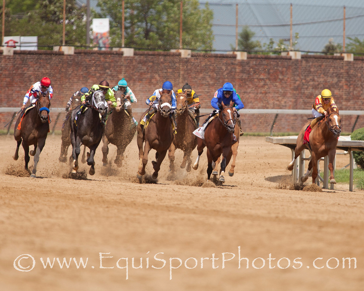 Coming out of the turn during The Alysheba (G3) race at Churchill Downs 05.06.11.