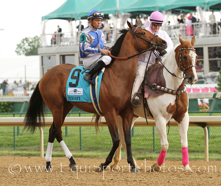 Might (Arch) and jockey Garrett Gomez win an allowance at Churchill Downs 5/6/11 for owners Adele Dilschneider and Claiborne Farm and trainer Al Stall.