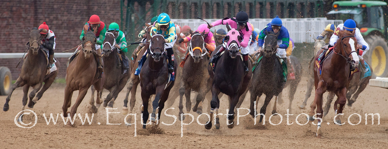 Around the turn at the 2011 Kentucky Derby (race winner, Animal Kingdom (Leroidesanimaux), 2nd from left)