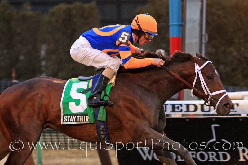 Stay Thirsty (Bernardini), Ramon Dominguez up, wins the Gotham Stakes (Gr III) for trainer Todd Pletcher and owner Repole Stable, at Aqueduct Racetrack 03.05.11jh