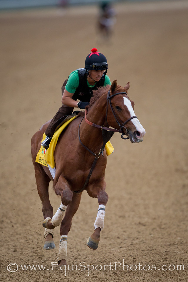 Shackleford exercises at Churchill Downs on 4.26.2011