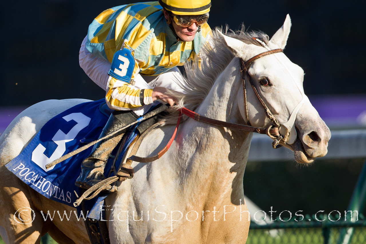 Dancinginherdreams (Tapit), Julien Leparoux up, wins The Pocahontas S. (G2) for John Ward and owner John Oxley at Churchill Downs 10.31.2010ww.