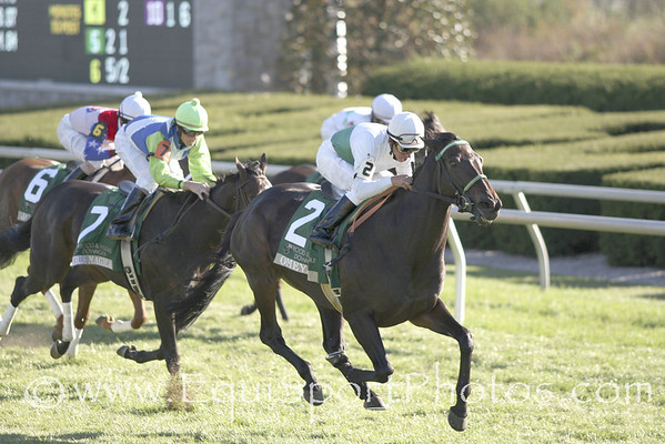 Omeya wins the Rood and Riddle Stakes at Keeneland on Turf.  For Fillies and Mares 3 yrs old and upward.  One and One half Miles.  Purse $150,000.  Eres Magica finishes second and Jade Queen third.